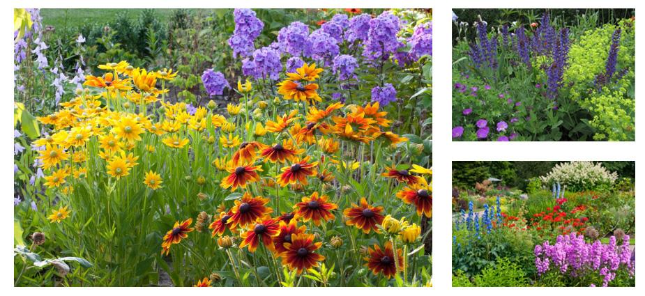 ogrody-bylinowe